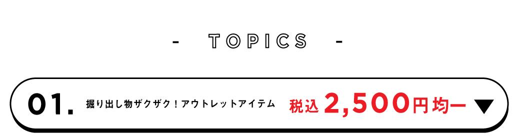 トップ_WEB限定アイテム3,900円
